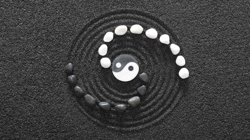 concept embodying yin and yang